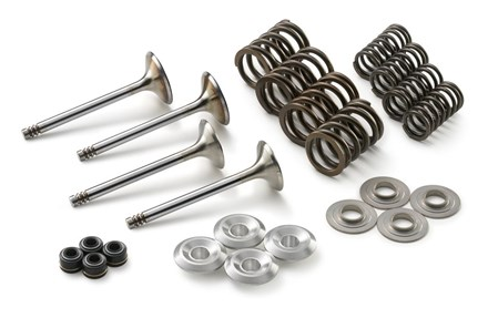 Picture for category Valve kit